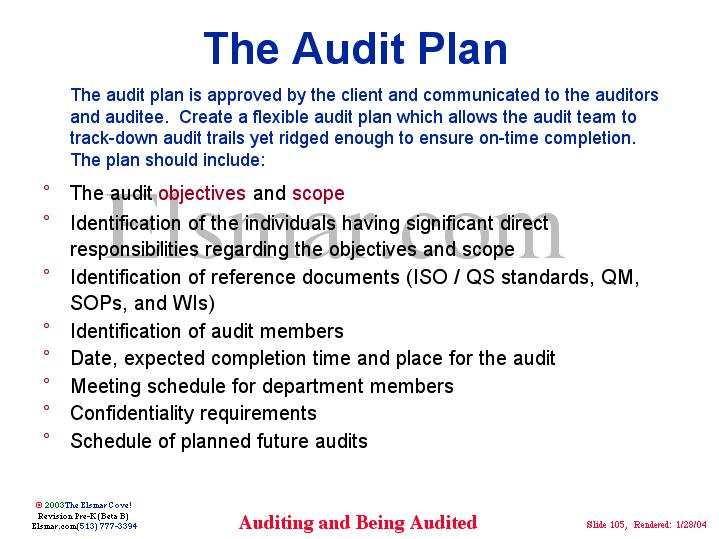 The Audit Plan