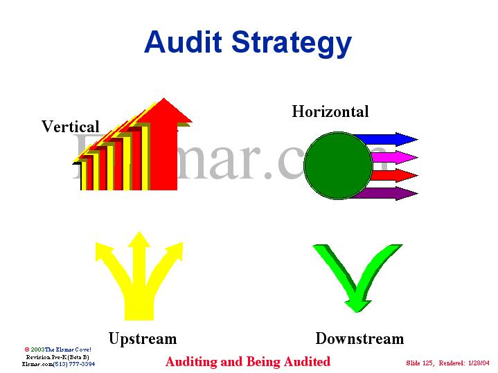Audit Strategy