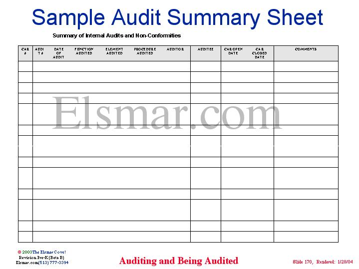 audit summary
