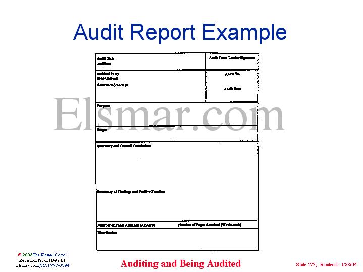 Elsmar Cove  It Audit Report Template
