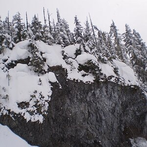 Rock wall and pines along Blackcomb trails