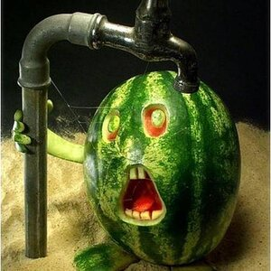 watery melon